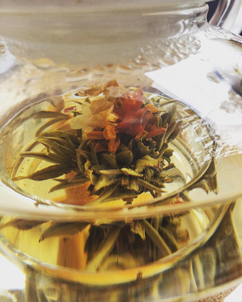 Blooming Tea  Photo Cred: Meredith Letrich